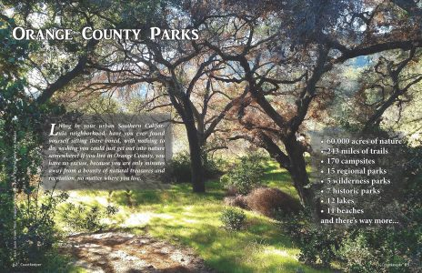 Opening spread for parks article