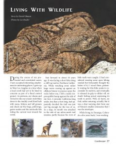 Opening page for wildlife article